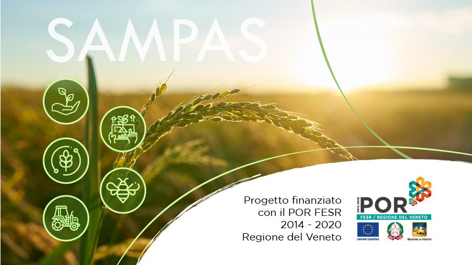 progetto Sampas - Consoft Informatica